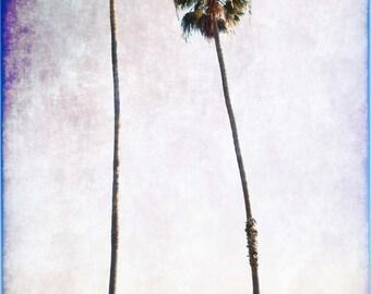 card beach palm trees Santa Barbara California vintage style 'Invitaion to the Beach'  S7896