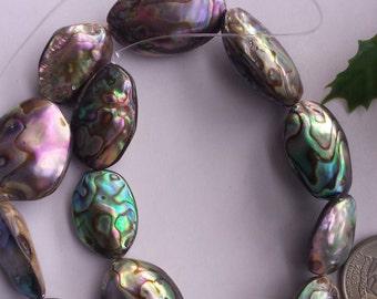 Abalone/Paua Shell Beads, Flat Oval, Colorful