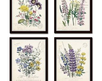 French Botanical Collage Print Set No. 2, Botanical, Print Set, Wall Art, Giclee, Flower Art, Vintage Botanical, Flower Prints, Illustration