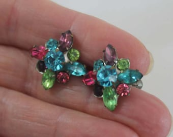 Multicolores Rhinestone Screw Back Earrings
