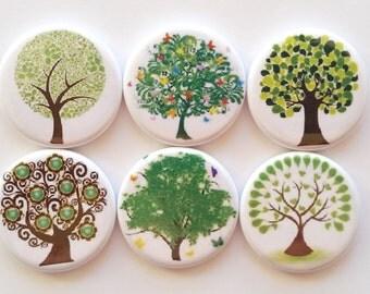 Tree Magnets, Refrigerator Magnets, Fridge Magnets, Decorative Trees Magnets, Premium Trees Magnets, Green Trees Magnets, Set of 6