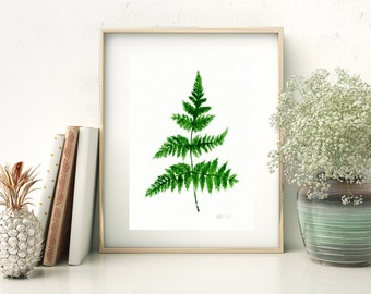Fern botanical art print from original watercolour painting, Fern leave plant, tropic illustration Fern is the national plant of New Zealand