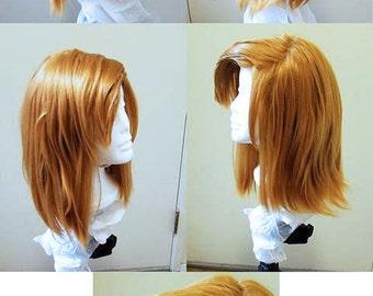 Wig: Link (Zelda CDI)
