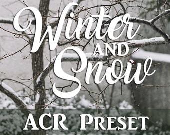ACR Camera Raw Preset Winter & Snow - Raw Preset, Adobe Preset, Photoshop Preset, Snow Presets, Winter Presets,