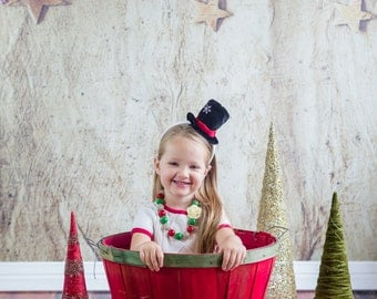5ftx5ft Holiday Berries- Vinyl Photography Backdrop - Christmas Backdrop - Holiday Backdrop - Item HR040