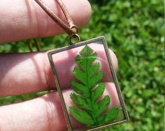 Real Green Plant Specimen Resin Cord Pendant Necklace
