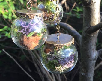 Botanical mobile, woodland flowers, lichen, moss nature terrarium