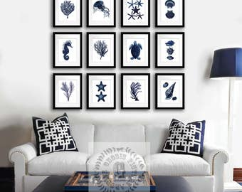 Navy Blue Wall Decor Sealife Set Of 12 Prints Summer Beach Home