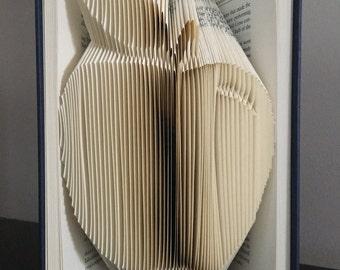 Apple Book Fold