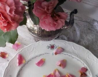 Vintage Serving Platter. Johnson Brothers. Caroline. Made In England. Wild Rose pattern. Laurel. Christmas table China