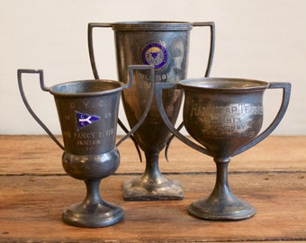 Vintage Silver Trophy Cup Grouping