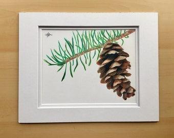 Pine cone drawing, original drawing, pine tree decor, colored pencil drawing, wall art drawing, housewarming gift
