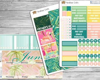 June - Month At A Glance Kit! 130+ Stickers Perfect for Erin Condren Life Planners!!