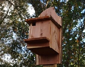 Flying Squirrel Nest Box