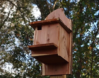 Flying Squirrel Nest Box