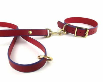 Red leather Dog Collar and Leash set with brass hardware