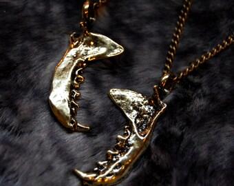 SALE!! Mandibula Jaw bone necklace