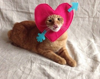 Be My Valentine Costume for Cats