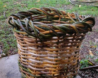 Lawyer cane basket