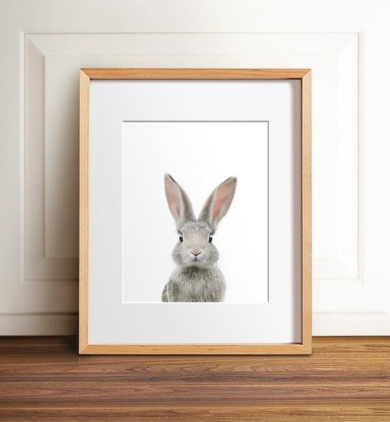 Nursery art, PRINTABLE art, Animal print, Baby rabbit print, Nursery decor, Animal art, Baby animals, Nursery wall art, Bunny print,Kids art