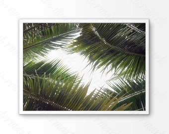 Palm leafs digital print Palm leaves print Palm leafs print Palm leaf prints Palm tree wall print Palm printable art Leafs palm printable