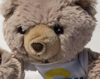 Vintage Zeddy Teddy Bear Plush Brown Zellers Department Stuffed Animal