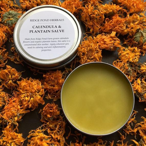 Calendula & Plantain Salve