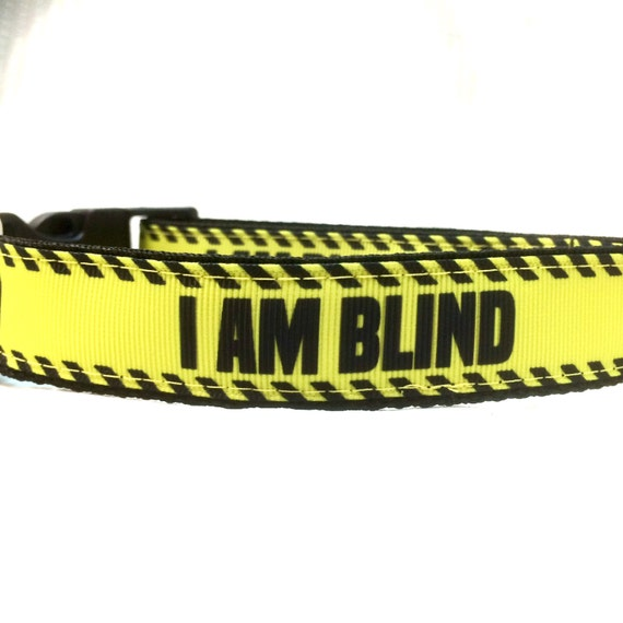 I Am Blind Dog Collar Leash Or Step In Harness With