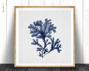 Seaweed Illustration, Indigo Blue Square Coral Print, Coastal Decor, Beach Nautical, Printable Digital Download, Sea Pulp, Ocean Plant Life