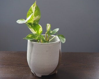 Handmade Ceramic Planter, Succulent Planter, White and Gray Planter, Small Planter with drain holes