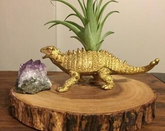 Dinosaur air planter/ plantasaur. Live air plant included!