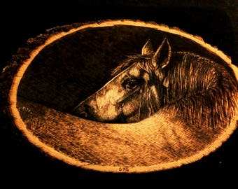 Handmade Wood Burning From a Unique Perspective of a Horse