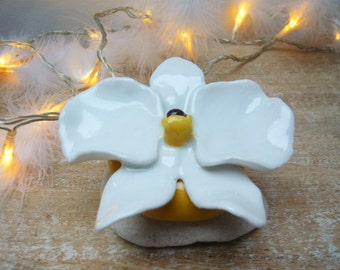 White Orchid in ceramic to decorate its interior