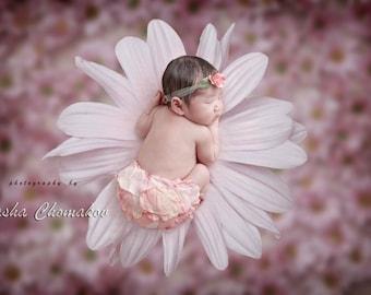 Digital backdrop newborn girl flowers pink  fairy tail