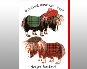 Birthday 'Neigh Bother' Card WWBI118