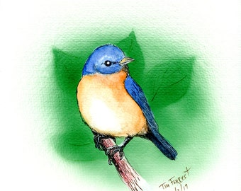 Bluebird with Leaves