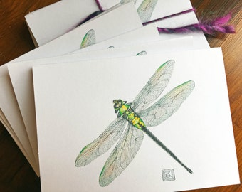 Set of 8 Dragonfly watercolor cards, includes envelopes,greeting cards, printed watercolor cards, blank greeting card, painting