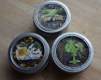 Your choice of herb Container