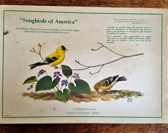 Chuck Ripper Laminated Placemats Five Different Birds Laminated in Original Box Originally Six Watercolor Repros of Original Reversible