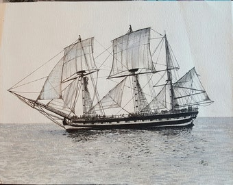 HMS Rose print of original ink painting.