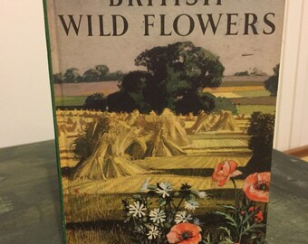 "Vintage ladybird book ""british wild flowers """