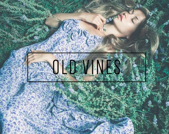 Old Vines Indie Muse Collection 3 Presets  4 Tool Presets 9 LR Brushes Lightroom Presets for Professional Results by LouMarksPhoto