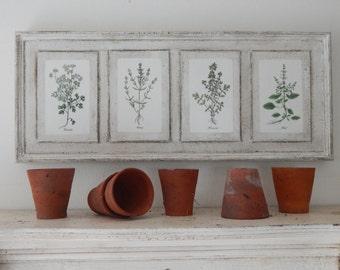 Antique Botanical Herb Prints on Wood vintage botanical print, antique botanical print, farmhouse decor, garden print herb print