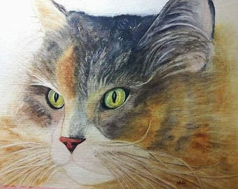 Watercolor Cats, cats, original,