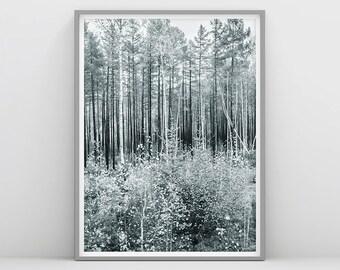 Scandinavian Forest - Tree Print - Scandinavian Wall Art - Nature - Forest Wall Print - Black and white Forest - Nordic Wall Art - Woods