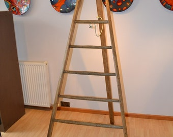 Antique Rustic French Fruit Pickers Ladder