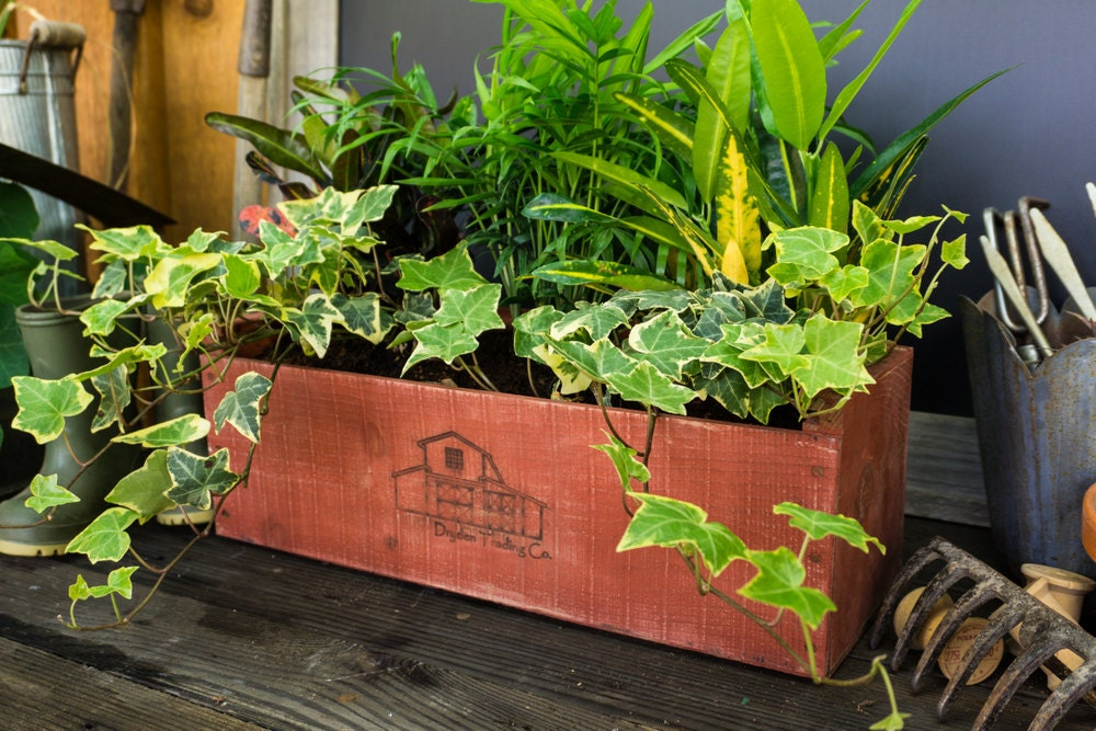 Indoor herb garden kit barn door red wedding - Indoor herb garden starter kit ...