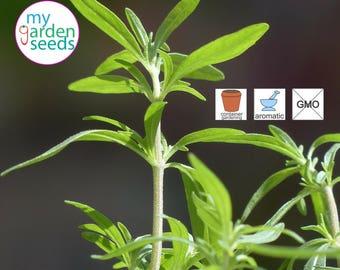 Summer Savory 400 seeds   Satureja Hortensis   heirloom seeds, untreated seeds, NON GMO