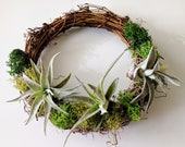 Living Wreath with Air Plants, Spanish Moss and Reindeer Moss