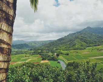 Digital download photography maui , Hawaii